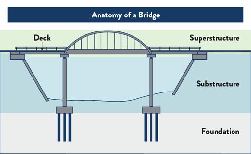 bridge-anatomy-800